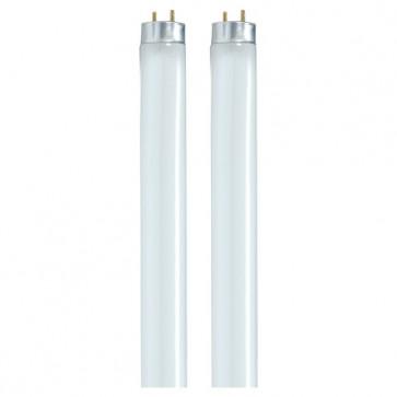 Satco  S8479        F32T8/841/ENV        32 watt T8 Fluorescent 4100K Cool White 85 CRI Medium Bi Pin base 2-Pack