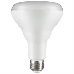 Sunlite 88905 9 Watt (Equivalent To 65 Watt) BR30 Reflector 650 Luments Medium (E26) Warm White LED Light Bulb