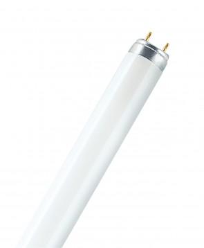 Osram 010526 L36W/76  36 Watt T8 Linear Fluorescent, Medium Bi-Pin (G13) Base, 7600K