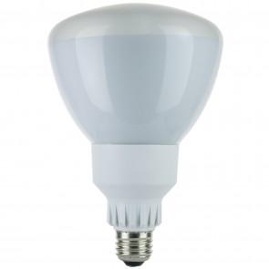 Sunlite 05387 SL25R40/41K 25 Watt R40 Reflector Energy Saving Light Bulb, Medium Base, Cool White