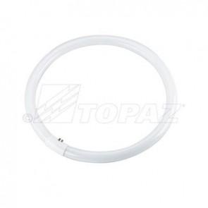 Topaz 74317 FC16T9CW, 40 Watts 16 Inch Length  Circline Fluorescent Light  4100 Cool White