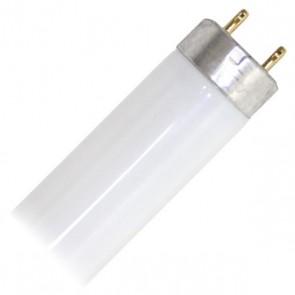 Osram 024295 L58W/67  58 Watt T8 Linear Fluorescent, Medium Bi-Pin (G13) Base, 6700K